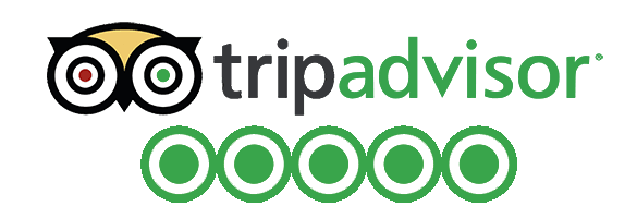tripadvisor+reviews