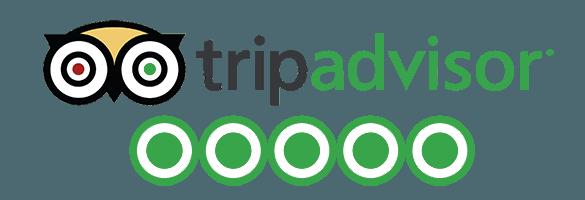 tripadvisor+reviews